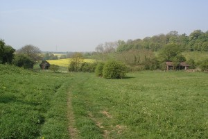 Looking down the Battlewell site from Greenhill